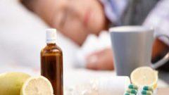 Hastalıkları Önleme ve Mücadele Etmeye Yardımcı Gıdalar !