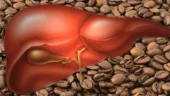 Günde 3 Bardak Kahve Sağlıklı mı?