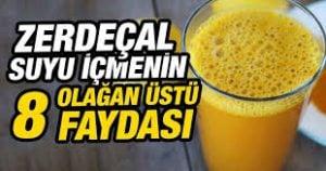 zerdecal-suyu-icmek-300x158