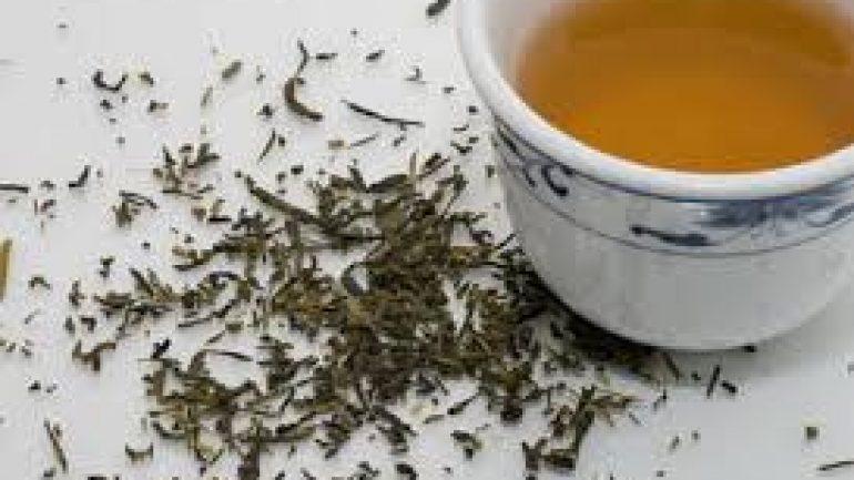 FundaYaprağı Çayının Faydaları