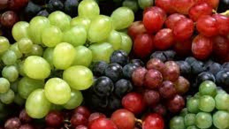 Üzüm Çekirdeği Yağı ve Faydaları