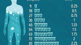 Gün İçerisinde Kaç Bardak Su İçmeliyiz