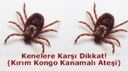 Kırım kongo kanamalı ateşi hastalığı nedir?