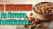 Dut Kurusunu Aç Karnına Tükettiginizde…