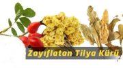 Tilya Kürü (Altın otu, Kuşburnu ve Ihlamur)…!