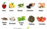 Bağışıklık Sistemini Destekleyen 10 Bitki