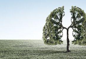 Sigara İçenlerin Yanında Bulunmak Bile Akciğer Kanseri Riskini Artırıyor