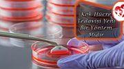 Kök Hücre Tedavisi Yeni Bir Yöntem Midir