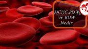 MCHC , PDW ve RDW Nedir