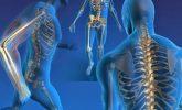 Ortopedik Hastalıklar Nelerdir