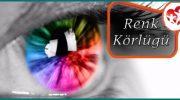 Renk Körlüğü Rahatsızlığı Belirtileri Ve Nedenleri Nelerdir?