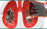 Sigarayı Bırakmada Geliştirilen Yöntemler Nelerdir?