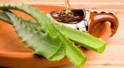 Gastrit ve Reflüyle Mücadele Eden İki Gıda