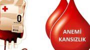 Hemoglobin (Hb) ve Anemi Nedir ?