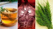 Bu 5 Bitkisel Çare İle Dolaşımı Nasıl İyileştirirsiniz?