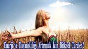 Enerji ve Dayanıklılığı Artırmak İçin Bitkisel Çareler !