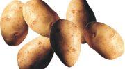 Patatesin faydaları  Prof.Dr. İbrahim Adnan Saraçoğlu