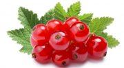 Frenk üzümü: Kırışıklıkları azaltmaya yardımcı olur
