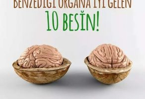Benzediği Organa İyi Gelen 10 Besin