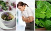 Hassas Bağırsak Sendromu Semptomlarını Bu 5 Şifalı Ot ile Rahatlatın