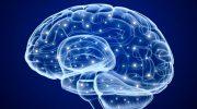 Ensefalopati ve Hepatik Ensefalopati Nedir, Nedenleri, Belirtileri ve Tedavisi
