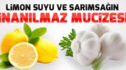Limon Sarımsak Karışımı