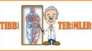 Önemli Tıbbi Terimler Listesi