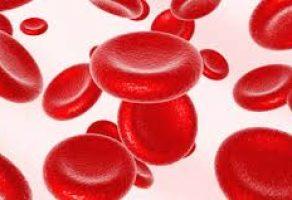 Hemoglobin Düşüklüğü Neden Olur ve Tedavisi Nasıl Yapılır?