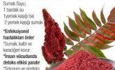 sumak tohumlarının akciğer enfeksiyonuna ve bu enfeksiyona neden olan mantara karşı etkili