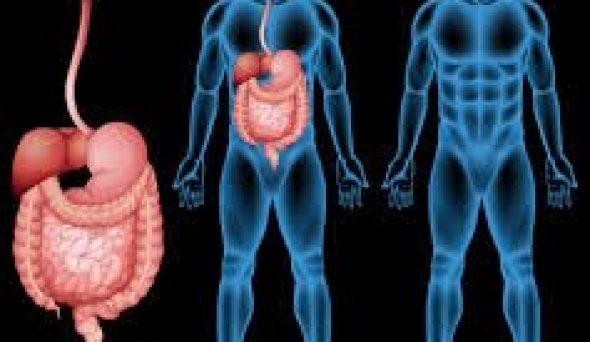 Karaciğerinizdeki 7 İşaret Var İse Kötü Durumda