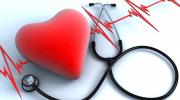 Üreme Organı Hastalıkları