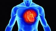 Kalp Yağlanmasına Ne iyi Gelir Bitkisel Çözüm