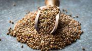 Karabuğday: Gluten içermez ve alerjik değildir