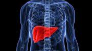 Hepatit A Nedir, Nedenleri, Nasıl Bulaşır, Belirtileri ve Tedavisi ?