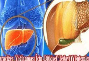Karaciğer Yağlanması İçin Bitkisel Tedavi Yöntemleri !