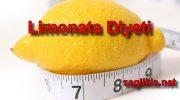 Limonata Diyeti Nasıl Yapılır,Kaç Kilo Verilir ?