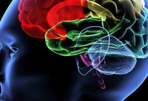 Menenjit ve Ensefalit (Beyin İltihabı) Nedir, Belirtileri, Nedenleri, Tanı ve Tedavisi