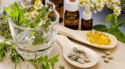 Hemoroid-Basur İçin Bitkisel Tedavi