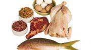 Protein Nedir Ne Demek-Proteinin Faydaları Yararları