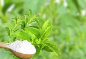 Şeker Otu: Dolaylı olarak kilo vermeye yardım edebilir