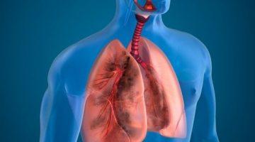Sigara İçenlerde Akciğeri Temizleyici 10 Doğal Ürün