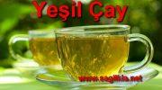 Yeşil Çay Hakkında Bilmeniz Gerekenler