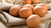 Yumurta Alerjisi: Çaba Gerektirir Ama Buna Değer